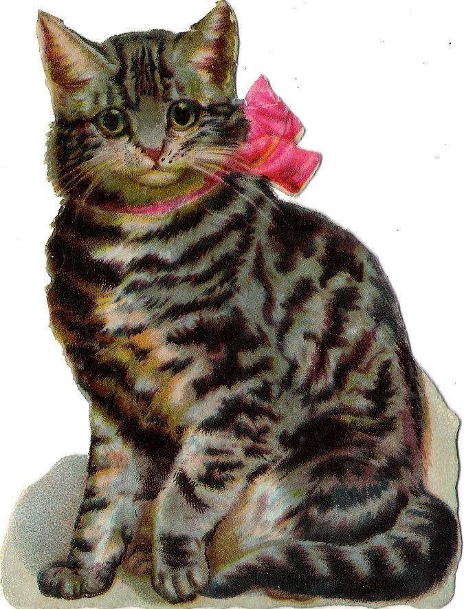Oblaten Glanzbild scrap die cut chromo Katze cat chaton 11,5cm chat kitten
