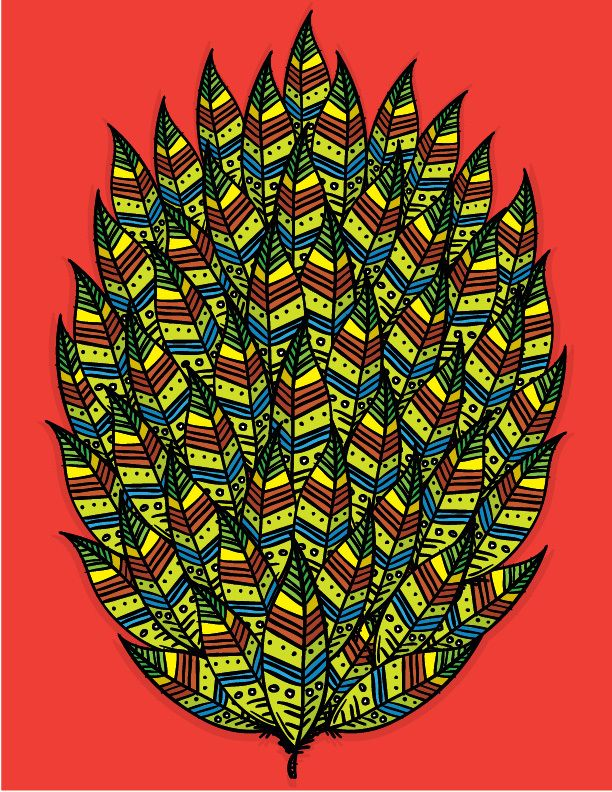 patterns illustrations - LA MURGA LAB