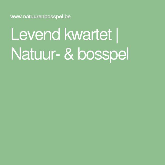 Levend kwartet | Natuur- & bosspel