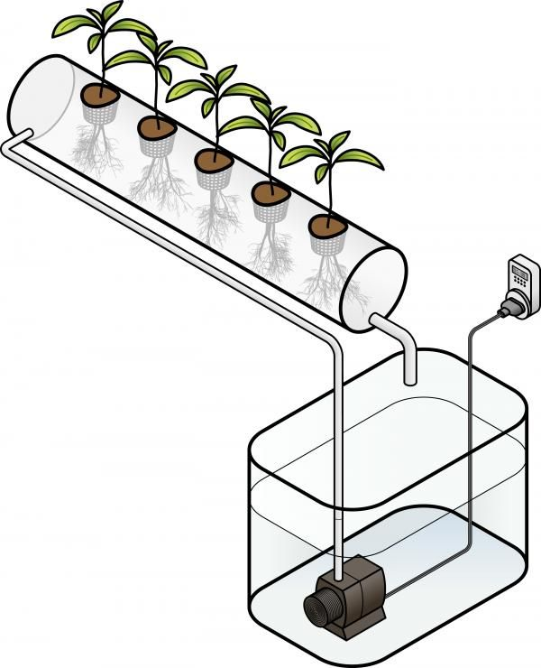 How do Hydroponics Work? #agriculture #green #plants #hydroponics #howto #garden #cultivate #hightech #organic