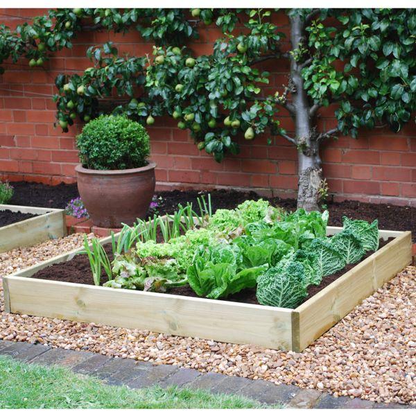 Comment démarrer un potager biologique urbain? Demandez de l'aide sur YoupiJob.com pour créer votre jardin urbain ! #Jobbing #Consocollab