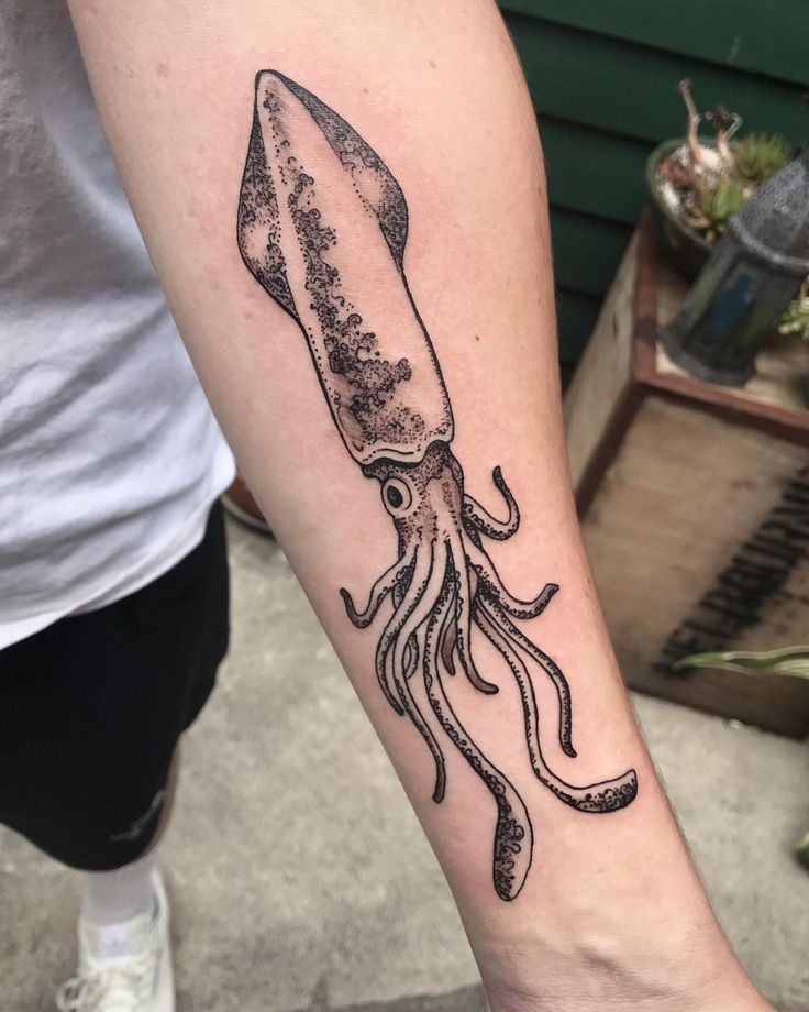 Squid By Stephanie Amaterstein Me At Sacred Serpent Tattoo Melbourne Amater Squid By Stephanie Amaterstein In 2020 Serpent Tattoo Tattoos Squid Tattoo