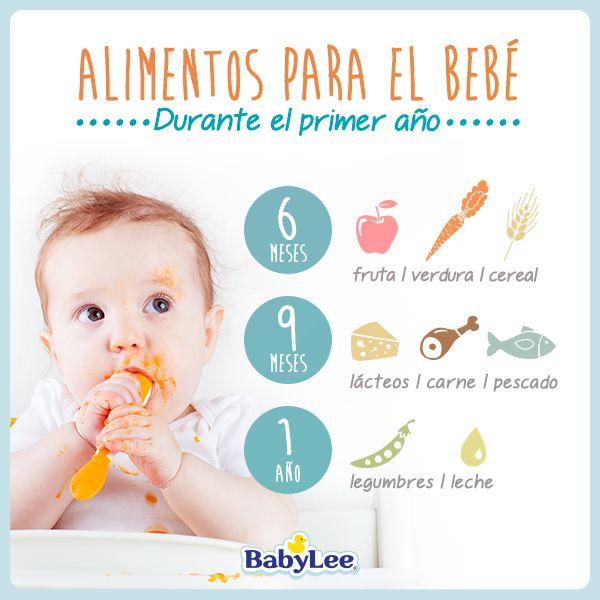Alimentos Para El Bebe Durante El Primer Año