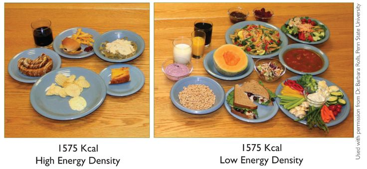 Energy Density means calories divided by grams/weight. The low energy density foods are also high nutrient dense foods.