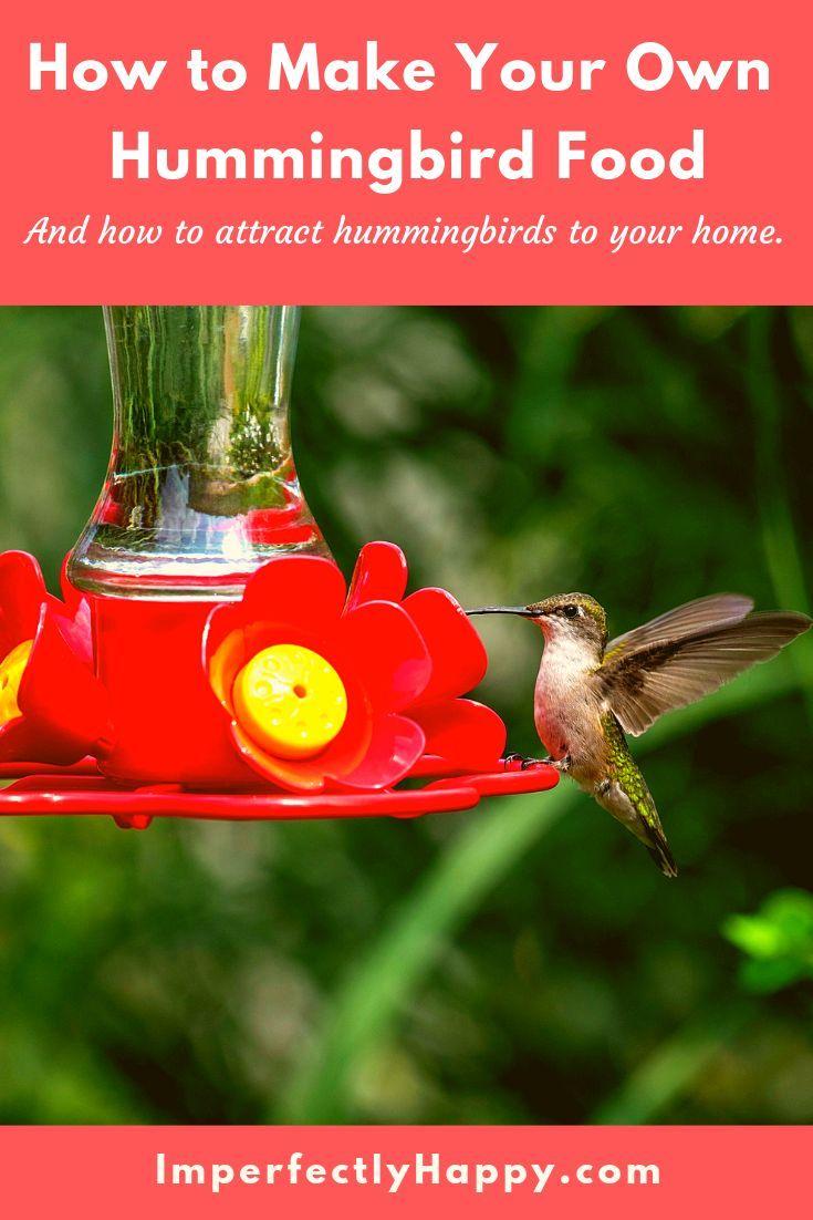 The Perfect Homemade Hummingbird Food Nectar Recipe
