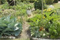 Jardin bio - Pailler le jardin : quand, comment, avec quel paillis ?