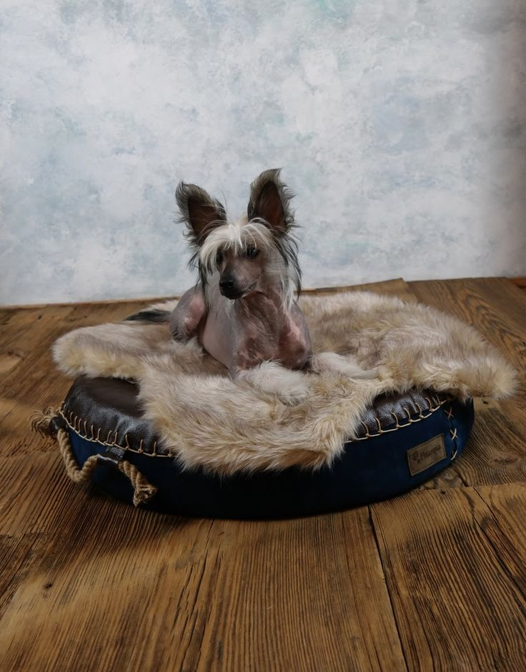 Leather & suede round dog bed by ooMelampus on Etsy