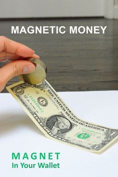 We're carrying magnet in our wallet -- interesting fact and experiment for kids.