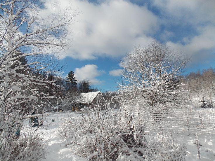 Snowy Barn. Picture taken by Wren Johnson