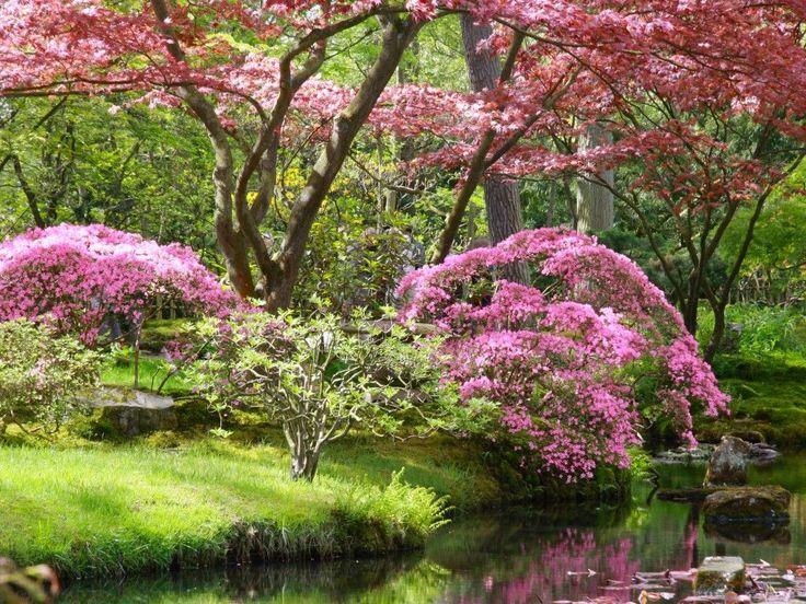2229-prachtige-japanse-tuin.jpg (1024×768)