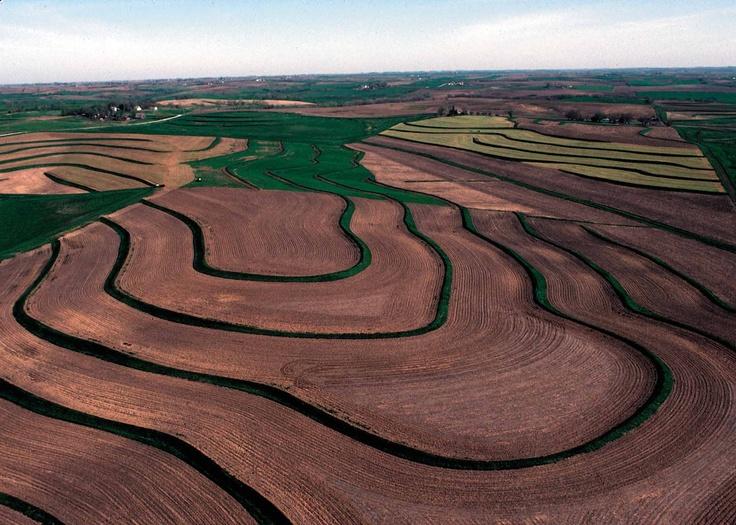 123 best images about Landform as Art on Pinterest | Gardens ...