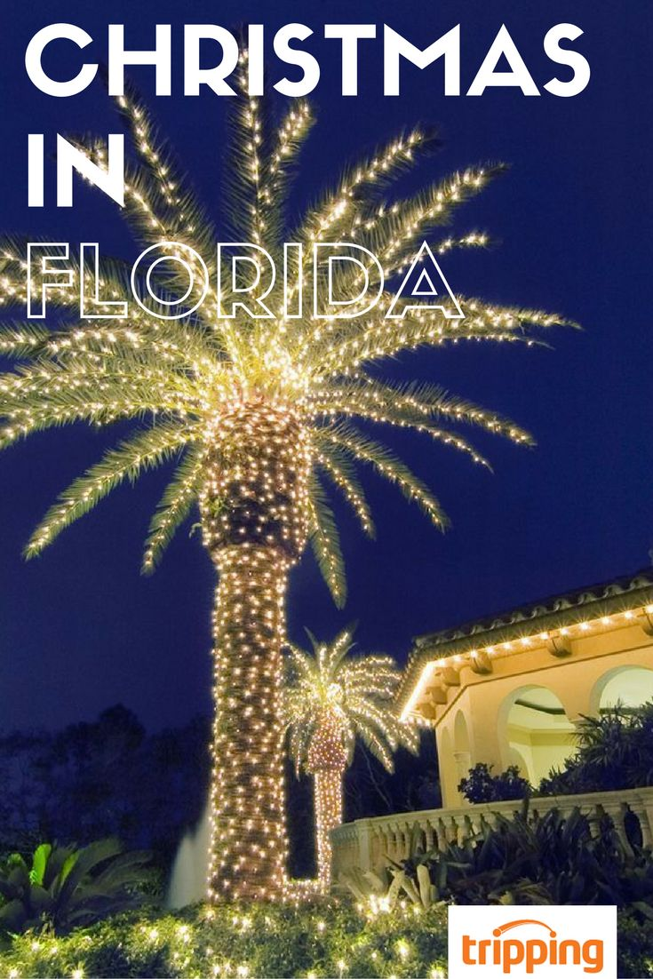 Who says you can't have the holidays without the shoveling and the snow tires? Experience Christmas, Sunshine State style! We've got tips on how to make the most of an FL trip in December