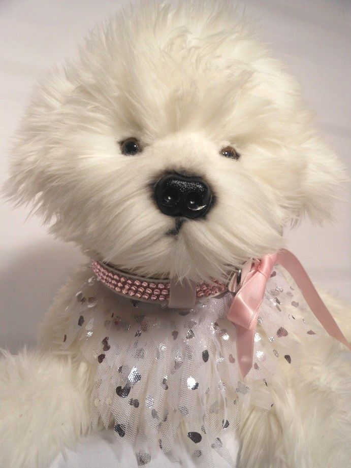 FLOWER GIRL  $15.00 purchase price is for bandana only. this very pretty white and silver fringed tulle bandana looks stunning on our pink diamante collar or a pale pink everyday collar. to compliment your bandana, browse our unique and exclusive collar range from Dog Collar Designs.