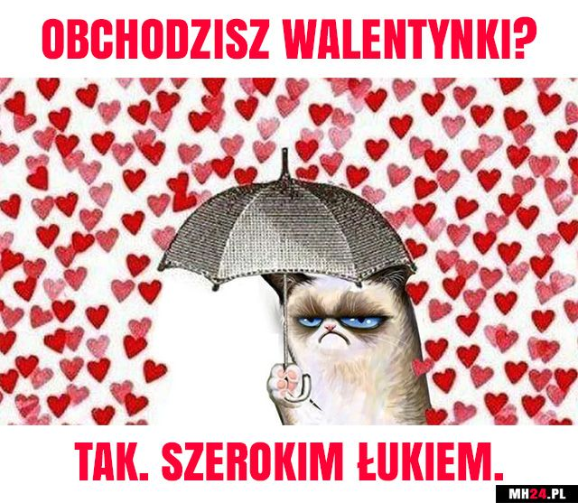 Walentynki (14 luty) - najlepsze śmieszne memy!