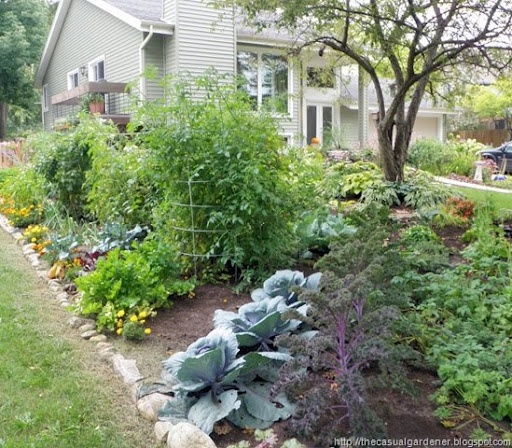 17 best images about front yard vegetable garden on pinterest gardens raised beds and pathways - Front yard vegetable garden ideas ...