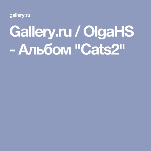 "Gallery.ru / OlgaHS - Альбом ""Cats2"""