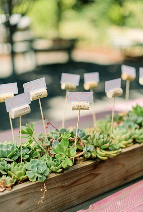 Brides: Succulent Wedding Escort Card Table. For a fun twist on the classic flower-covered escort card table, consider organizing seating assignments inside an arrangement of succulents, like Off the Beaten Path created here.