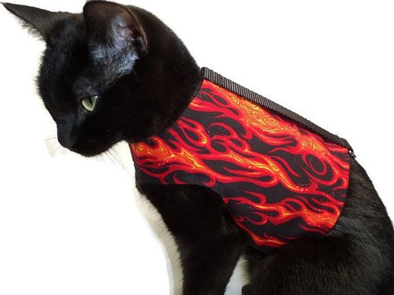 Cat Harness Cat Clothes Flame Cat Harness door RockinDogsCoolCats