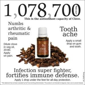 Young Living Clove Essential Oil Tooth Ache Infection Immune Defense by lori.mcnutt.9