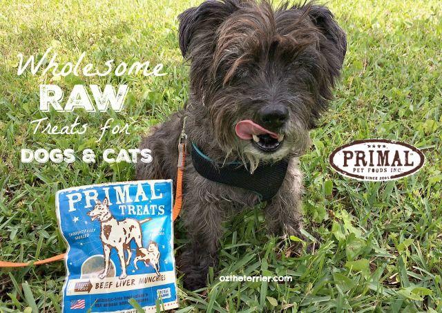Primal raw dog food coupons