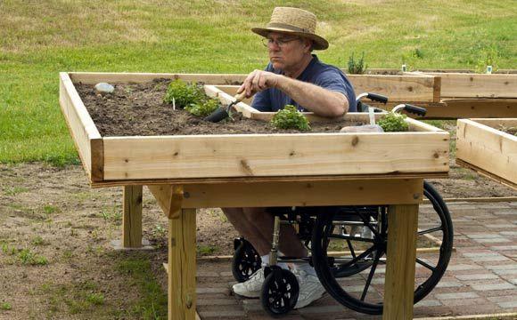 Horta deve ser suspensa para o manuseio do cadeirante (Foto: Shutterstock)