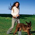 How to Become a Dog Trainer | The Bark