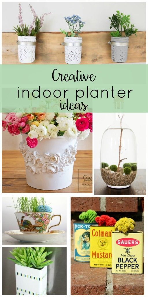 Bring the outdoors in with these creative indoor planter ideas! They're all easy DIY's that will have you feeling spring!