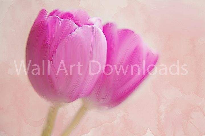 Wall Art Pink Tulip