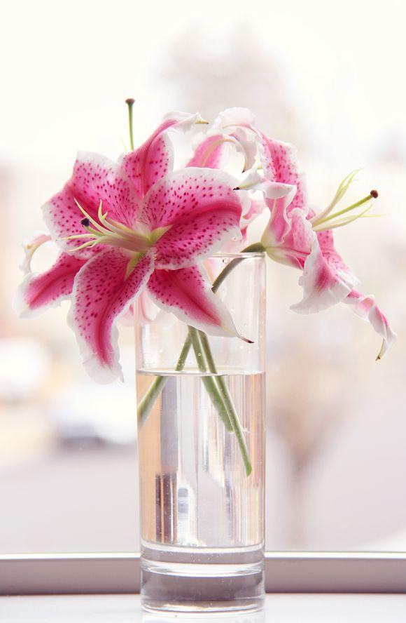 Beautiful Stargazer Lilies | Lovely Clusters http://www.lovelyclustersblog.com