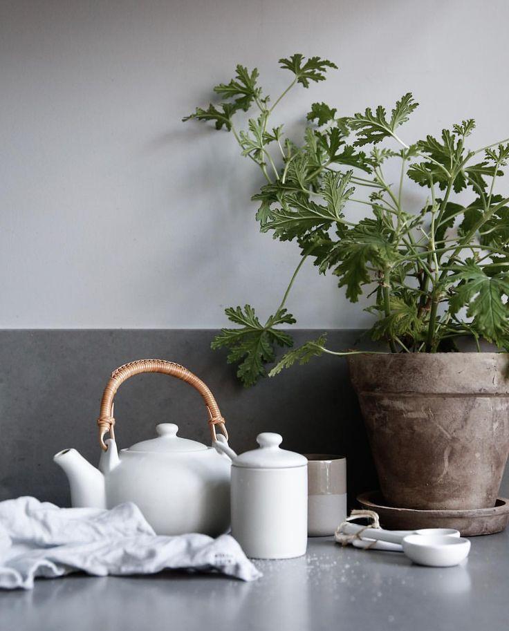 @jasminabylund Kitchen stuff _________________________________________________________________ #interior #kitchen #kitcheninspo #greykitchen #hth #hthkitchen #greyinterior #inspo #inredningsinspo #inredning #scandinaviandeco #nordicdesign #interiordesignSkandinaviskahem #interiorforall #interior4u #interiordeco #interiorforyou #myhome #homeinspo #mimou #himla #lagerhaus
