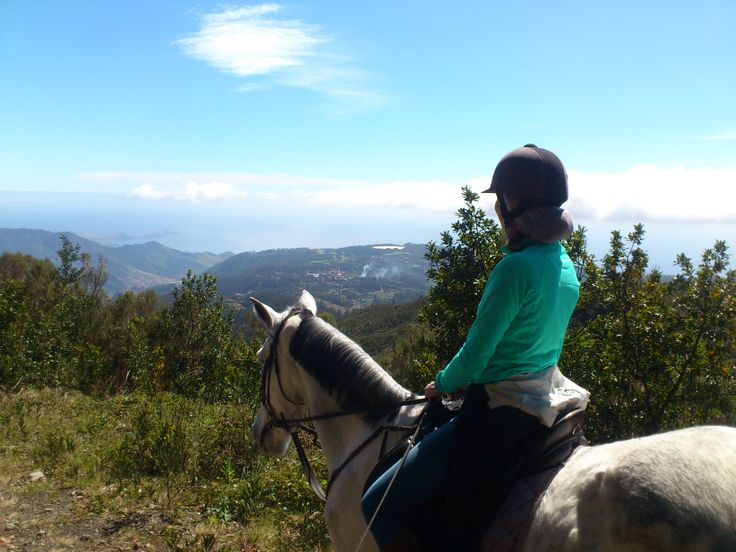 What a view!  #horses #chevaux #pferd #paard #paardrijden #horseriding #equitation #reiten #madeiraisland #laurissilva #fun #thingstodo #leisureriding #sun #pontadesaolourenco #santodaserra