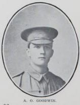 GOODWIN,   Andrew   Oliver.   Private,   No.  2434.   Son   of   the   late   William  King  Goodwin   and   Alice   Goodwin,   of   Saltwater   Creek   Road,   Maryborough.