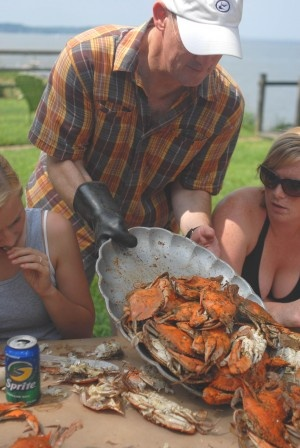 Md Blue Crabs Steamed With Old Bay Seasoning