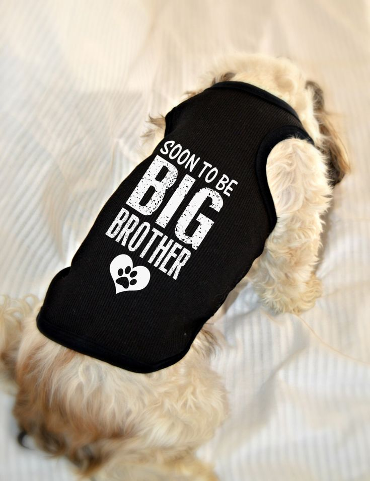 Custom Dog Tank Tops. Big Brother Dog Shirt. Small Pet Clothes. Gift for Expecting Mother. by RedemptionDog on Etsy https://www.etsy.com/listing/212634478/custom-dog-tank-tops-big-brother-dog