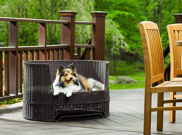 Outdoor Dog Day Bed