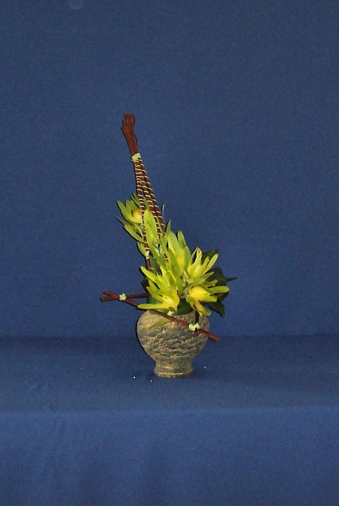 Creativity with Sticks and String - VFAJA workshop June 2010