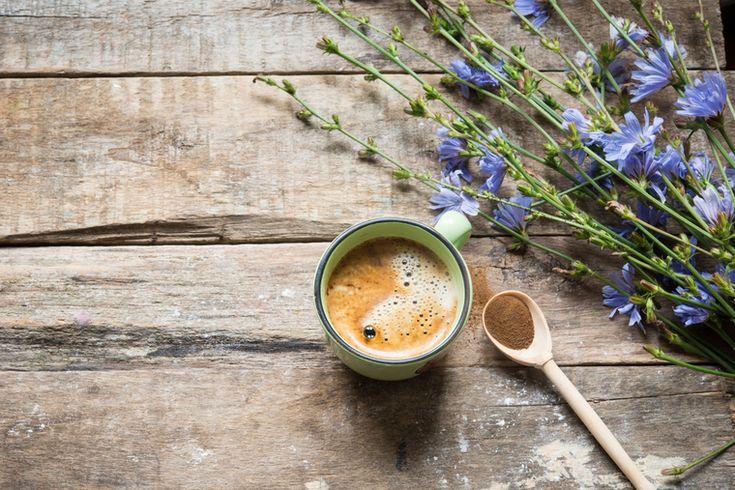 Все новое – это хорошо забытое старое... или то, что уже давно попадается на глаза. У многих из нас цикорий ассоциируется с напитком, который пили в советские времена, когда не было возможности купить настоящий кофе. Однако не все знали и знают, что цикорий – это маленькое чудо природы, растение с голубыми цветами, растущее на необъятных просторах нашей страны. Цикорий можно легко спутать с сорняком, хотя именно из его листьев можно приготовить салат из нежных морских гребешков с…