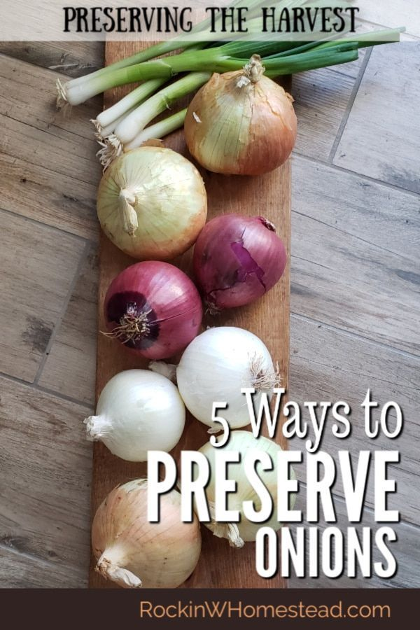 5 Ways To Preserve Onions Rockin W Homestead Dehydrated Onions Preserving Vegetables Onion