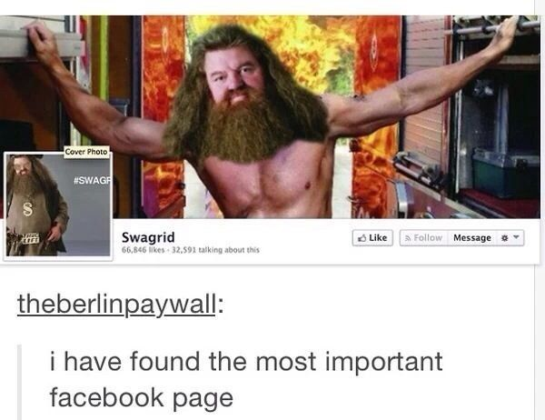 """The most important Facebook page: 