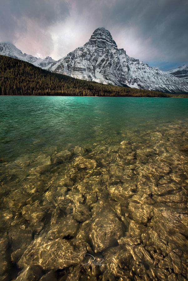 Mount Chephren Glow (Banff, Alberta) by Perri K Schelat / 500px