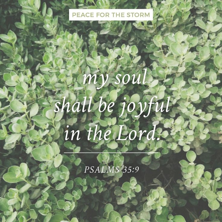 And my soul shall be joyful in the Lord; it shall rejoice in His salvation. Psalms 35:9 (NKJV)