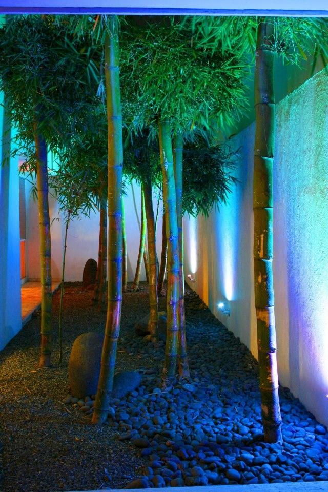 17 best images about decoideas decora con bambu on - Bambu para jardin ...