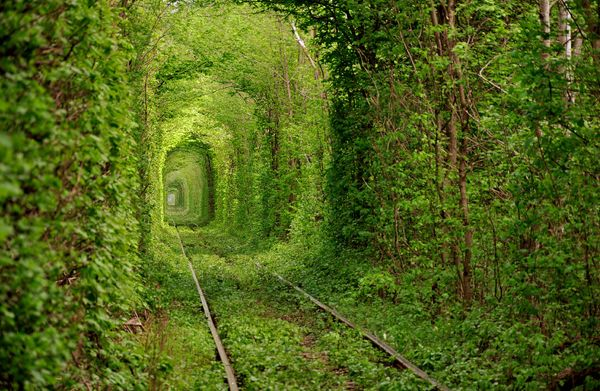 Tunnel-of-Love-Ukraine-enpundit-35Train Tracks, Buckets Lists, Trees Tunnel, Old Trains, Beautiful Places, Training Track, Old Training, Tree Tunnel, Abandoned Places
