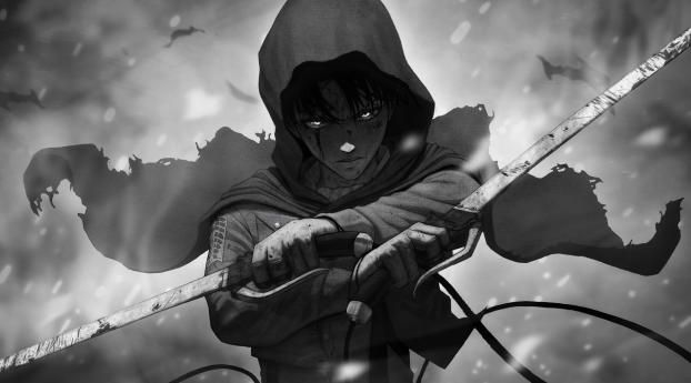 Levi Ackerman Monochrome Wallpaper Hd Anime 4k Wallpapers Images Photos And Background Attack On Titan Levi Attack On Titan Levi Ackerman