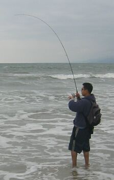 The ideal light tackle surf fishing outfit fishing for Surf fishing tackle