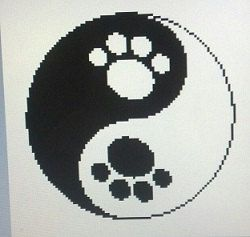 The ancient Chinese subscribe to a concept called Yin Yang which is a belief that there exist two complementary forces in the universe. One is
