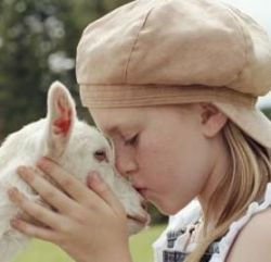 La vita emotiva degli animali da fattoria - Versione integrale in italiano | #304 | Laverabestia.org - Animal Video Community