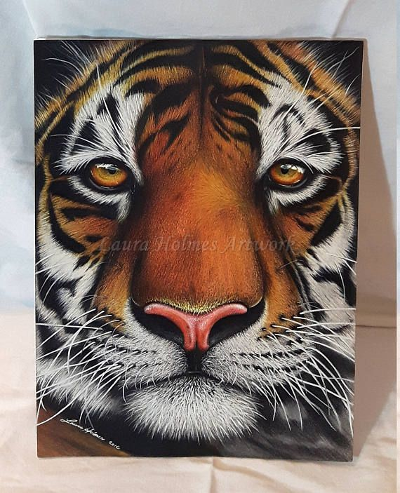 Best 25+ Tiger Face Drawing Ideas On Pinterest