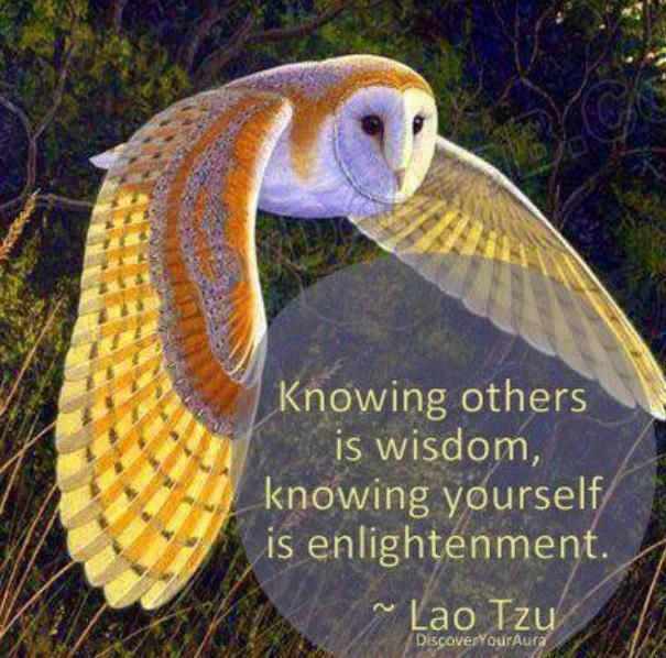 The search for Self is a fascinating journey filled with unexpected discoveries.