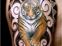 Tatuagens de Tigres: nas Costas, Orientais, no Braço